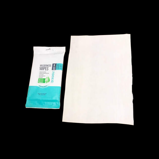 OEM Professional Factory direct Biodegradable Adult Body Outdoor Sports Wet Wipes